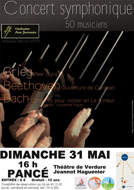 concert symphonique Pancé 31 05 2015 PNG 550x780px